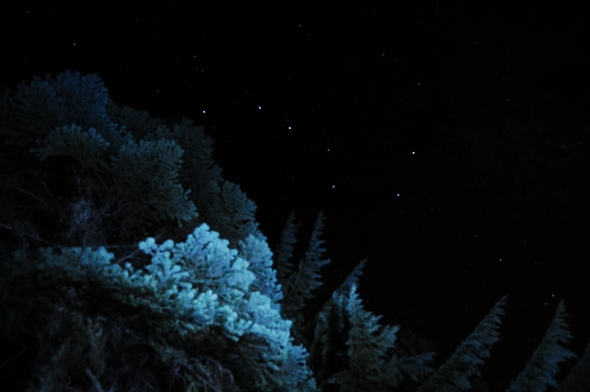 Durtschi Big Dipper Ursa Major